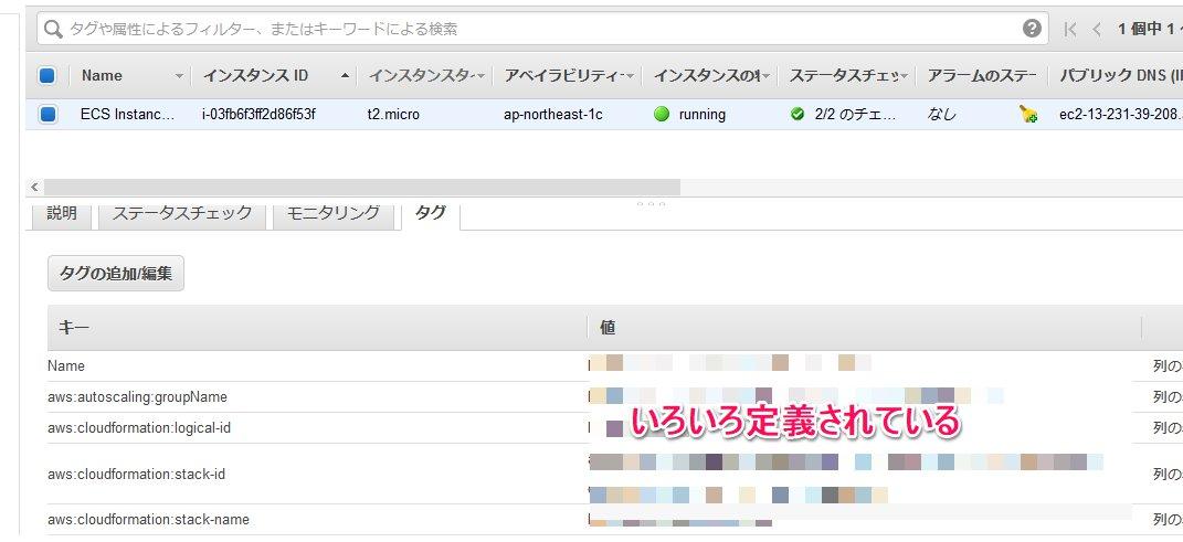 ecs_12.jpg